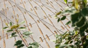 Idealnym kontrastem dla utrzymanej w skali szarości nawierzchni będą intensywnie zielone rośliny.