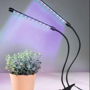 Lampy do doświetlania roślin Hama Circle. Fot. Hama Circle