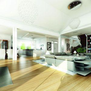 Wysoki przestronny salon z okazałymi przeszkleniami z widokiem na taras jest jednym z głównych atutów domu. Fot. MG Projekt