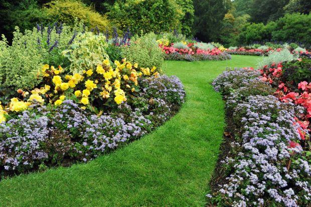 To, co chcemy mieć w ogrodzie w dużej mierze zależy od wielkości naszej działki. Niezależnie od powierzchni, jaką możemy przeznaczyć na ogród, najważniejsza jest <br />harmonijna aranżacja – dom i ogród powinny wzajemne się dopełnia