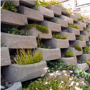 Gazony moga posłużyć nam do wykreowania w otoczeniu pięknych kwiatowych ścian. Fot. Buszrem