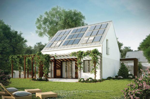 Pergola może pełnić w architekturze ogrodowej wiele funkcji. Przede wszystkim stanowi podporę dla roślin. Jest także źródłem cienia na tarasie. Pergola może być wykorzystywana do zawieszenia na niej dodatkowego oświetlenia czy plandeki przeciw