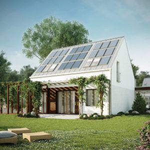 Pergola może pełnić w architekturze ogrodowej wiele funkcji. Przede wszystkim stanowi podporę dla roślin. Jest także źródłem cienia na tarasie. Projekt: Malutki. Fot. Domy Czystej Energii