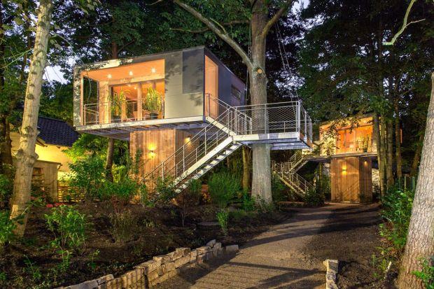 Miejski dom na drzewie