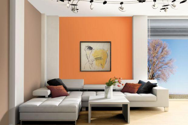 Dekorowanie ścian nie ogranicza się jedynie do prawidłowego naniesienia wybranej farby czy tynku. Dlatego pierwszym etapem jest zaprojektowanie wnętrza i gruntowne zastanowienie się nad wyborem zestawień kolorystycznych i pożądanych struktur.