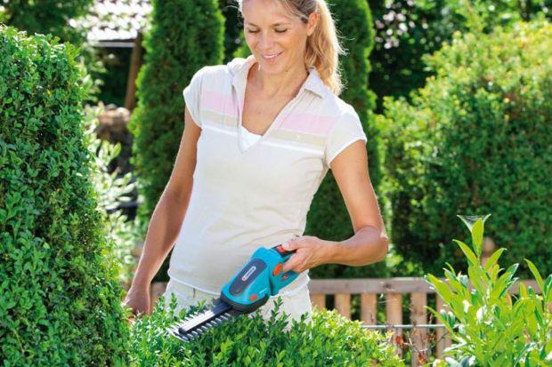 Lipiec i sierpień to w kalendarzu ogrodniczym najlepsza pora na sezonowe przycinanie odpowiednich gatunków krzewów.
