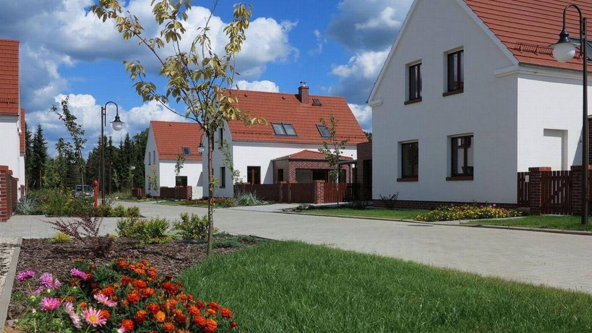 """Sześć białych domów stojących przy malowniczej drodze w pobliżu Jeziora Turawskiego do złudzenia przypomina typowe """"jamniki"""