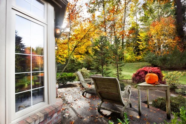 Ogród jesienią. Jak go przygotować do zimy?