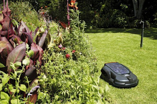 Wiosna i lato to miesiące wzmożonych prac w ogrodzie. Szczególnie ważne jest dbanie o zieloną murawę w naszych ogrodach. Idealnie przycięty trawnik to zadanie dla specjalisty.