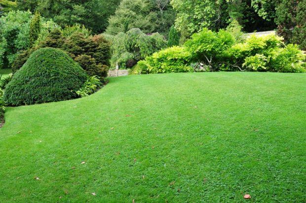 Nowoczesne technologie zadbają o ogród lepiej niż jego właściciel. Nie tylko ułatwią utrzymanie przydomowej zieleni i pomogą zoptymalizować związane z tym koszty. Sprawią również, że otoczenie domu będzie jeszcze piękniejsze.