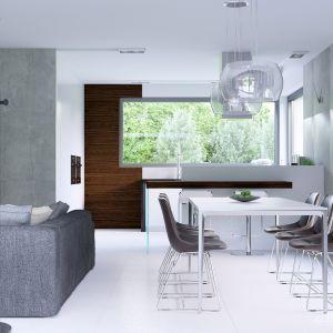 Jadalnię również urządzono w minimalistycznym , nowoczesnym stylu. Prosty stół i 6 krzeseł to jej całe wyposażenie. Fot. HomeKONCEPT