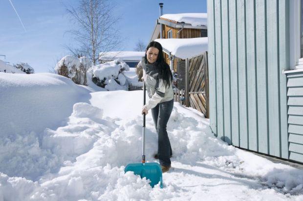 Nie każdemu zima kojarzy się z obrazem zaśnieżonego stoku, dziećmi na sankach, czy łyżwach. Mimo, iż ogród zapadł w zimowy sen, nie ma mowy o odpoczynku dla ogrodników, administratorów i zarządców budynków. Jedną z czynności, które nale�