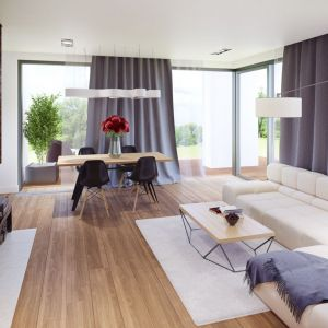 W salonie i jadalni dominuje biel, którą ociepla drewno na podłodze i ścianie. Fot. Archipelag