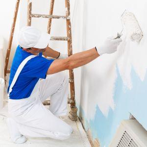Do całkowitego kosztu malowania ścian oprócz farby należy dodać niezbędny sprzęt malarski. Fot. Dekoral