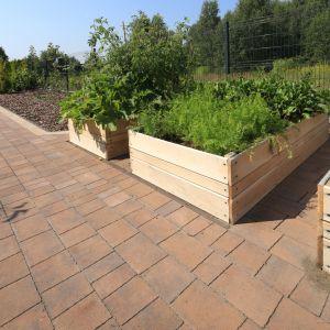 Posiadanie ogrodu bądź własnej działki to dla wielu osób, szczególnie tych mieszkających w aglomeracjach miejskich, wciąż niespełnione marzenie. Fot. Polbruk