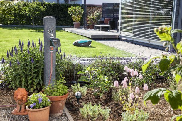 Zdalne koszenie trawnika i nawadnianie ogrodu za pomocą aplikacji – teraz to możliwe. Gardenasmart system daje możliwość kontrolowania swojego ogrodu za pomocą telefonu lub przeglądarki internetowej. Dane na temat wilgotności gleby, temperatur