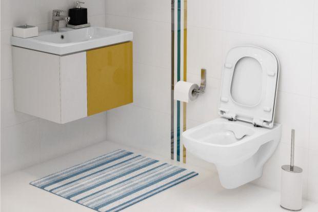 Czysta łazienka i zadbana toaleta sprawiają, że ich codzienne użytkowanie staje się nie tylko przyjemniejsze, ale przede wszystkim bardziej higieniczne. I choć staramy się dbać o te pomieszczenia najlepiej jak potrafimy, nie zawsze jesteśmy w p