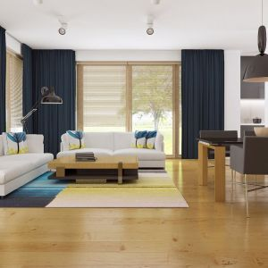 Jasne wnętrze salonu ocieplono drewnianą podłogą i ożywiono ciemnymi dodatkami (zasłony, krzesła). Fot. Z500