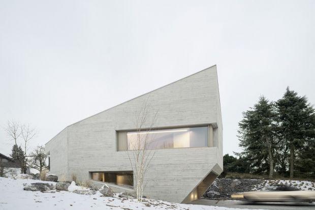 Bryła rezydencji E20 jest w całości wykonana z betonu izolacyjnego. Swoim nieregularnym kształtem elewacji przypomina kryształ. Wnętrza domu zostały zaaranżowane w minimalistycznym stylu. Dominują tu jasne, zimne kolory oraz beton ocieplony drewn