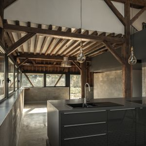 Porzucony i zaniedbany budynek w latach swojej świetności pełnił funkcję zwykłe małej stodoły, czy też nawet i magazynu, gdzie trzymano pasze dla koni roboczych. Fot. The Barn, Antonin Ziegler
