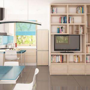 Salon, kuchnia i jadalnia tworzą jedną otwartą strefę dzienną. Fot. Z500