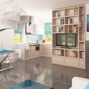 Chociaż dom Z212 ma jedynie 78 m kw. powierzchni można go urządzić funkcjonalnie, unikając wrażenia ciasnoty. Salon Fot. Z500