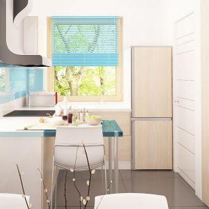 W niewielkiej, półotwartej kuchni znalazło się miejsce na wszystko co jest niezbędne do przygotowywania codziennych posiłków. Fot. Z500