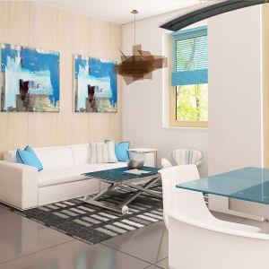 Wnętrza pięknie uzupełniają obrazy, na których dominuje błękit. Fot. Z500