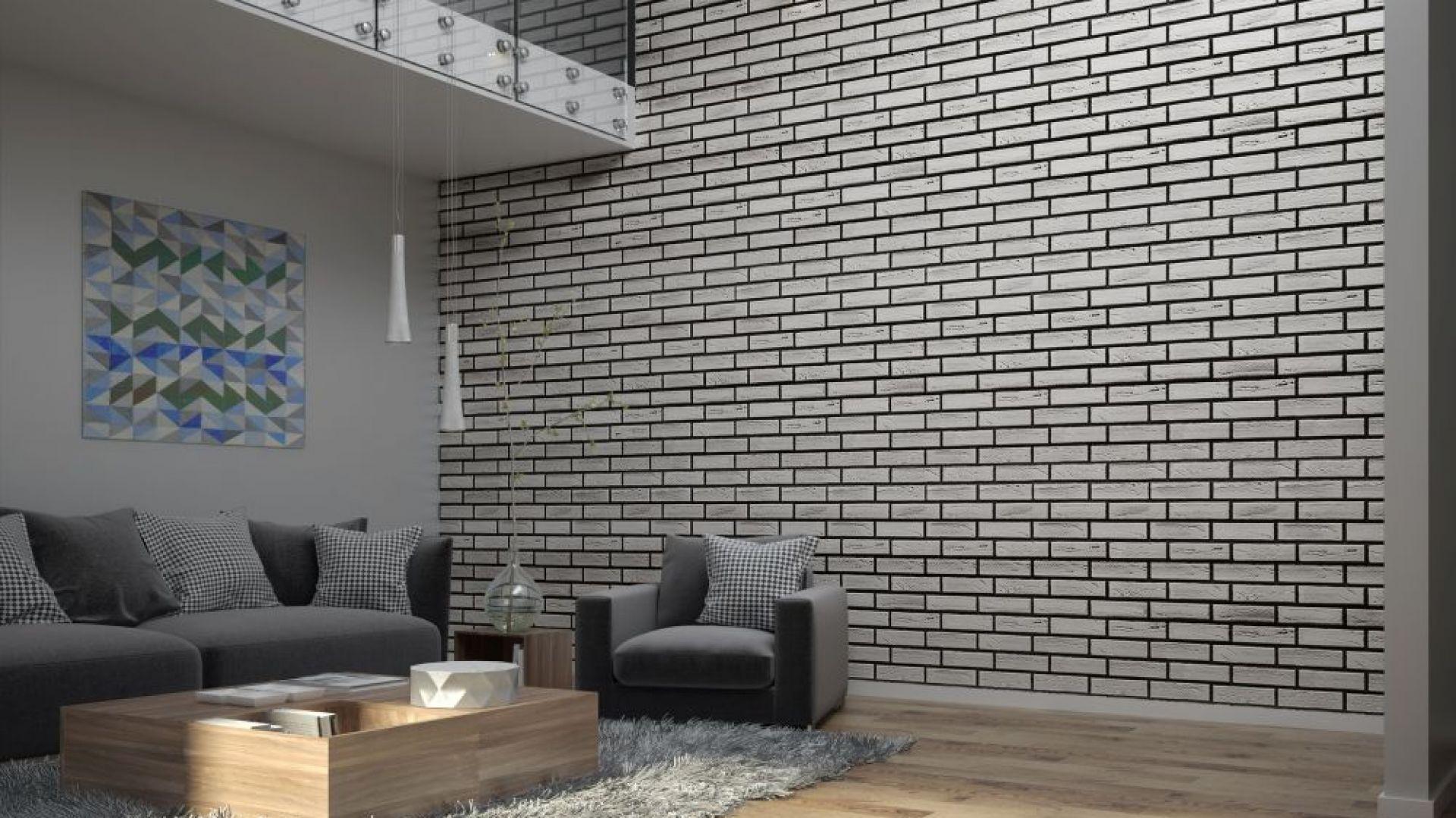 Płytki klinkierowe to wyrazisty materiał, dlatego jeśli marzymy o ceglanym efekcie w niedużym mieszkaniu - warto rozważyć wyłożenie tylko jednej ze ścian.  Fot. Elastolith