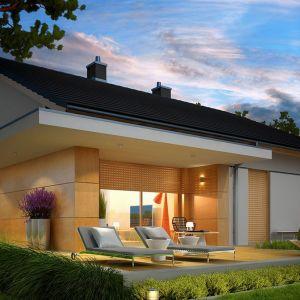 W przypadku domów tradycyjnych lepiej sprawdzi się wykorzystanie materiałów takich jak kamień, drewno czy ceramika, z kolei bryły domów nowoczesnych znakomicie uzupełnią nowoczesne donice betonowe lub metalowe. Projekt domu Iwo G1. Fot. Archipelag.pl