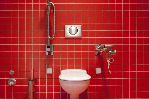 Jak dostosować domową łazienkę do potrzeb niepełnosprawnych?