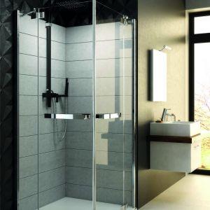 W zależności od modelu, kabiny prysznicowe dość znacząco różnią się pod względem funkcjonalności dla osób o ograniczonej mobilności. Fot. Aquaform
