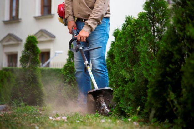 Jesień w ogrodzie to pora intensywnych przygotowań do zamknięcia sezonu z jednoczesnym planowaniem upraw, aranżacji zieleni na wiosnę i lato. W tym roku, po ostatnich deszczowych i chłodnawych miesiącach, warto między innymi zadbać o dokładne sp