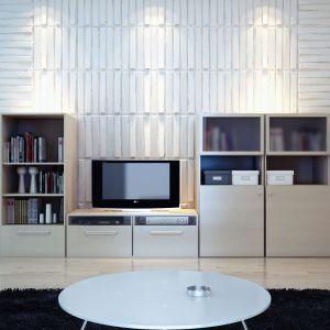 Trójwymiarowe panele ścienne nadają wnętrzu nowoczesny charakter, są nieskomplikowane w montażu i łatwe w czyszczeniu. Fot. Cameleo