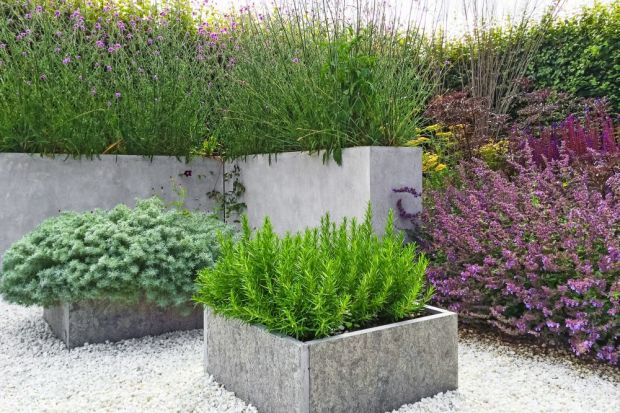 Betonowe elementy architektoniczne w ogrodzie dają nieskończone możliwości aranżacyjne. Są trwałe, odporne na działanie czynników atmosferycznych, a dodatkowo odznaczają się nietuzinkowym designem. Jednak warto brać pod uwagę jeszcze jeden, b