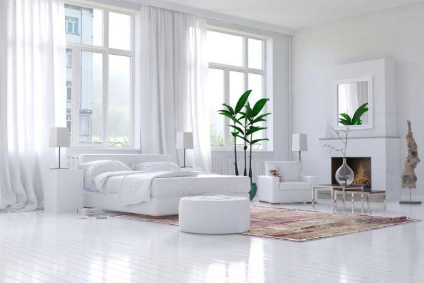 Wnętrza w jednolitym kolorze