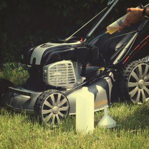Ekologiczna pielęgnacja trawnika to proces pracochłonny – nie ma co do tego wątpliwości. Fot. Krysiak