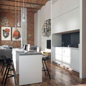 Lofty to z definicji hale fabryczne zaadaptowane na mieszkanie lub pracownię artysty. Fot. Nowa Papiernia