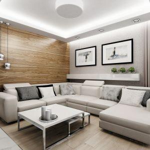 Ściana za kanapą w całości jest pokryta drewnem. Nadaje to salonowi wyjątkowo przytulnego charakteru. Fot. MTM Styl