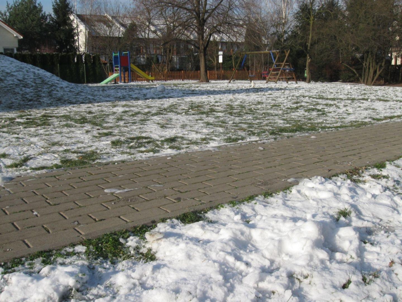 Do odgarnięcia świeżego śniegu brzozowa miotła zupełnie wystarczy. Fot. Buszrem.