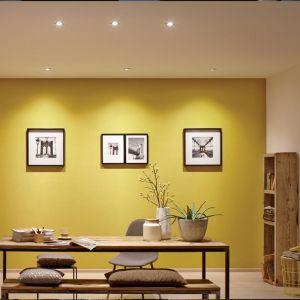 Dobrej jakości LED potrzebuje kilkakrotnie mniej prądu niż klasyczna żarówka starego typu, by zapewnić taką samą jasność. Fot. Lange Łukasik