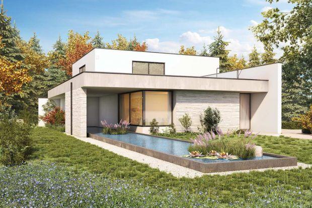 Ogród na dachu płaskim