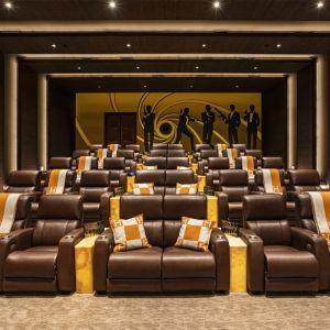 Kino domowe w tym przypadku nabiera nowego znaczenia. Fot. Bruce Makowsky / BAM Luxury Development