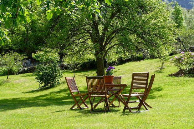 Ogród pełen najpiękniejszych kwiatów będzie wydawać się niekompletny, jeśli zabraknie w nim drewna. Wykonane z tego ponadczasowego surowca elementy wyposażenia wniosą do ogrodowej scenerii naturalny wdzięk i ciepło, które skutecznie zachęcą