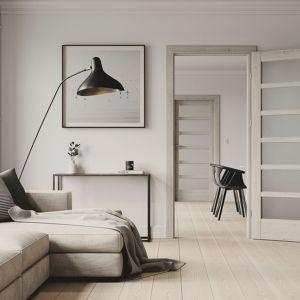 Przeszklone drzwi Porta Verte Home rozświetlą pomieszczenie, umożliwiając swobodny przepływ światła w ciągu dnia. Fot. Porta