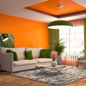 Ciepłe barwy działają pobudzająco, wywołują radość i wzmacniają kreatywność. Fot. CIQ
