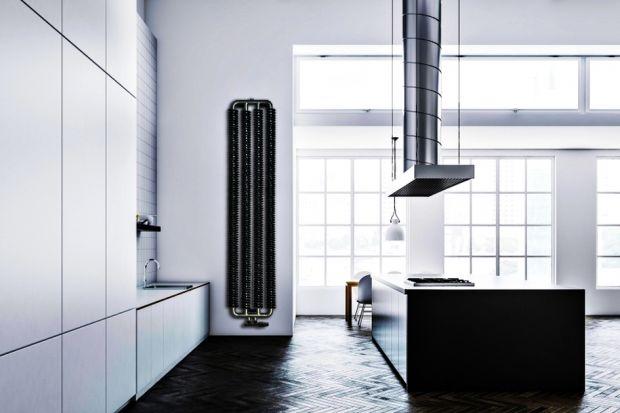 Jeśli nasze mieszkanie nie mieści się w pofabrycznym budynku to nie oznacza to, że nie możemy mieć wnętrz w stylu loftowym. Ogranicza nas tylko nasza własna wyobraźnia. Producenci mebli, czy elementów wykończenia dają nam sporo możliwości, d