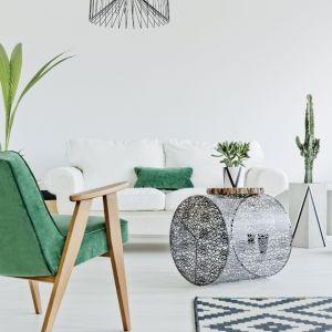 Pomieszczenia pomalowane na jasne kolory, np. Silver Pearl, bardzo dobrze wyglądają w towarzystwie wszelkiej roślinności. Fot. Beckers