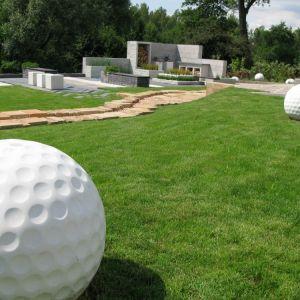 Piłka golfowa. Fot. Libet
