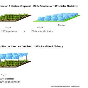 Efektywność użytkowania 1 hektara gruntów z systemem APV wynosi 186 procent. Fot. Fraunhofer ISE